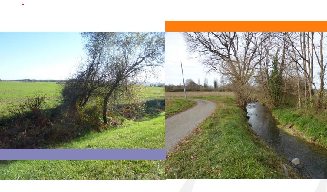 Enquête publique pour la déclaration d'intérêt général du programme pluriannuel de gestion des cours d'eau du bassin de l'Agle et de l'Aulouze
